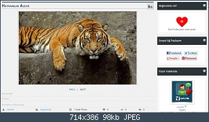 Resmi gerçek boyutunda görmek için tıklayın.  Resmin ismi:  medya-galeri9.jpg Görüntüleme: 71 Büyüklüğü:  98.1 KB (Kilobyte)