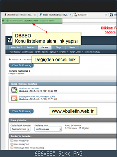 dbseo_konulisteleme_once1.png