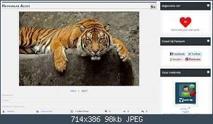 Resmi gerçek boyutunda görmek için tıklayın.  Resmin ismi:  medya-galeri9.jpg Görüntüleme: 73 Büyüklüğü:  98.1 KB (Kilobyte)